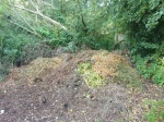 The pile of grass cuttings and leaves