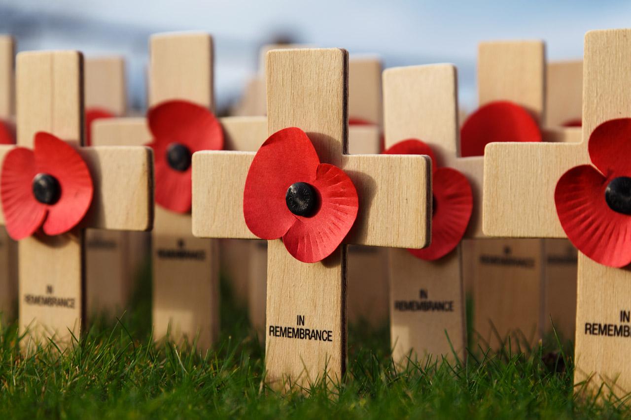 in-remembrance-11300115244nlU